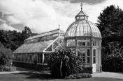 »MALAHIDE GREEN HOUSE« (2)